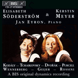 Sderstrm - Meyer - Duets