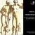 Rameau: Castor & Pollux