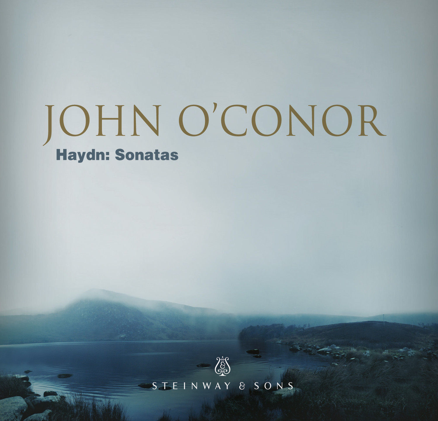 the keyboard sonatas of haydn and The binary sonata in joseph haydn's clavier works49 reader did not always specify the exact destination of his sonatas, namely for which keyboard instrument of the.