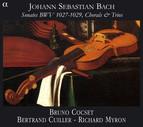 Bach: Sonates, BWV 1027-1029, Chorals and Trios