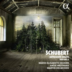 Schubert: Piano Trio No. 2 in E-Flat Major, D. 929 & Arpeggione Sonata in A Minor, D. 821