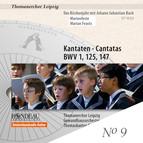 Das Kirchenjahr mit Johann Sebastian Bach - Marienfeste