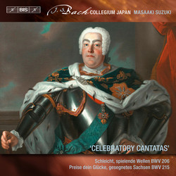 Bach - Secular Cantatas, Vol. 8