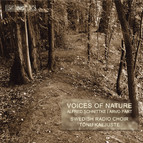 Voices of Nature - choir music by Schnittke and Prt