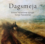 Dagsmeja