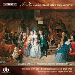J. S. Bach – Secular Cantatas, Volume 3