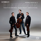 Ludwig van Beethoven: String Trios Op.9