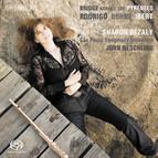 Bridge across the Pyrenees - Flute Concertos