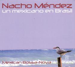 Mexico Un Mexicano En Brasil
